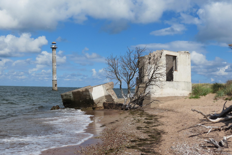 18-varsked-purustused-kiipsaare-tuletornivahi-maja-kohal